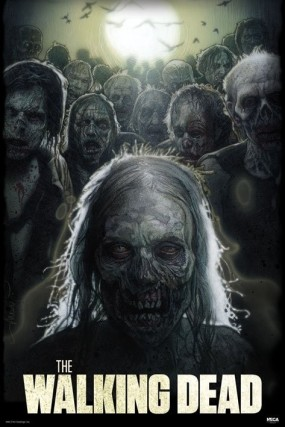 the-walking-dead-zombies-i8609